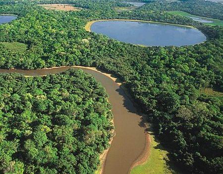 Pantanal e Bonito são os principais destinos de ecoturismo