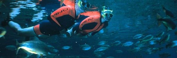 Flutuação é o esporte mais praticado, tamanha a variedade de peixes nos muitos rios de águas cristalinas